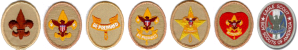 Boy_Scouting_ranks_(Boy_Scouts_of_America)